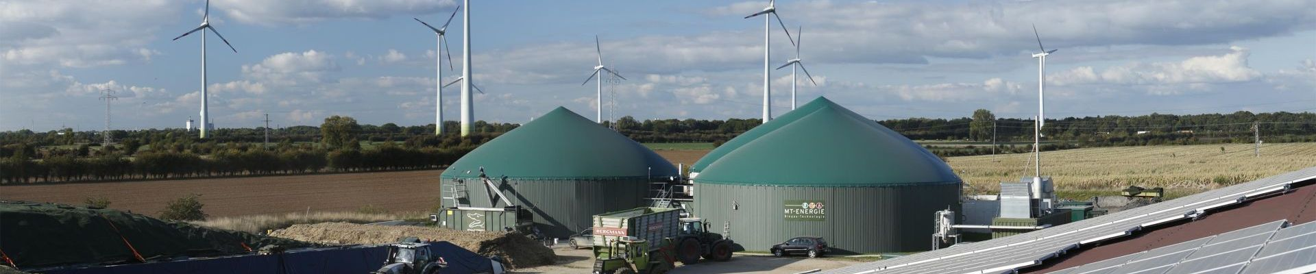 Biogas plant for flexibility generation