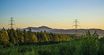 transmission line in the forest requires efficient monitoring
