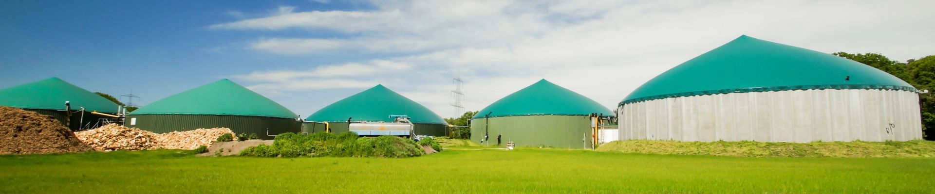 Virtual power plant for marketing of flexibility from biogas plants